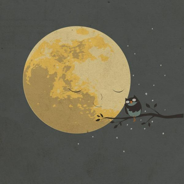 Красивые картинки Арт Живность сова Милота
