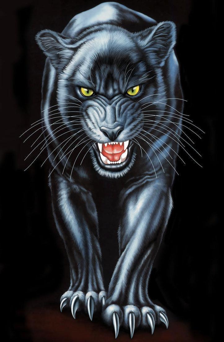 Красивые картинки пантера