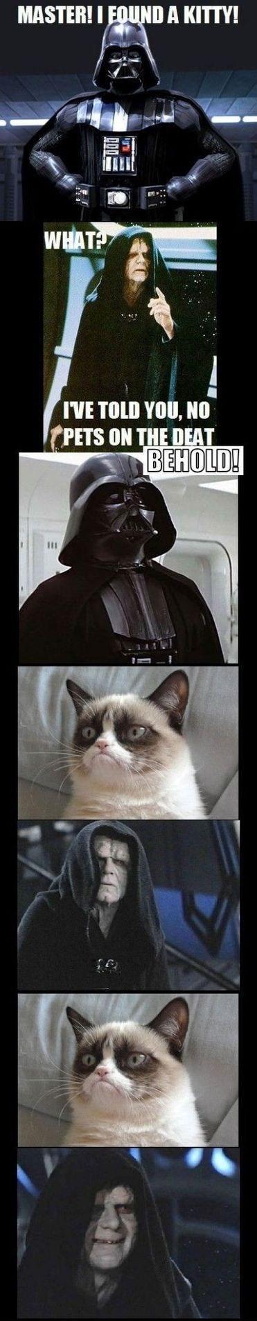 Комиксы Прикольные картинки Grumpy Cat
