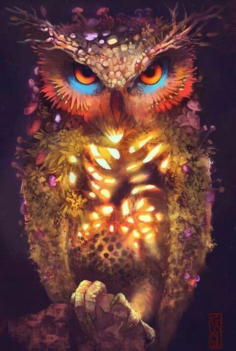 Красивые картинки Арт сова