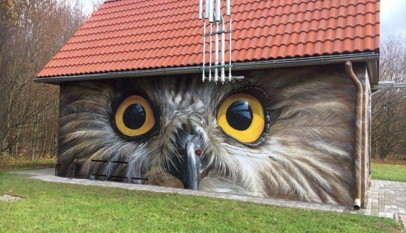 Красивые картинки Арт сова Графити Искусство
