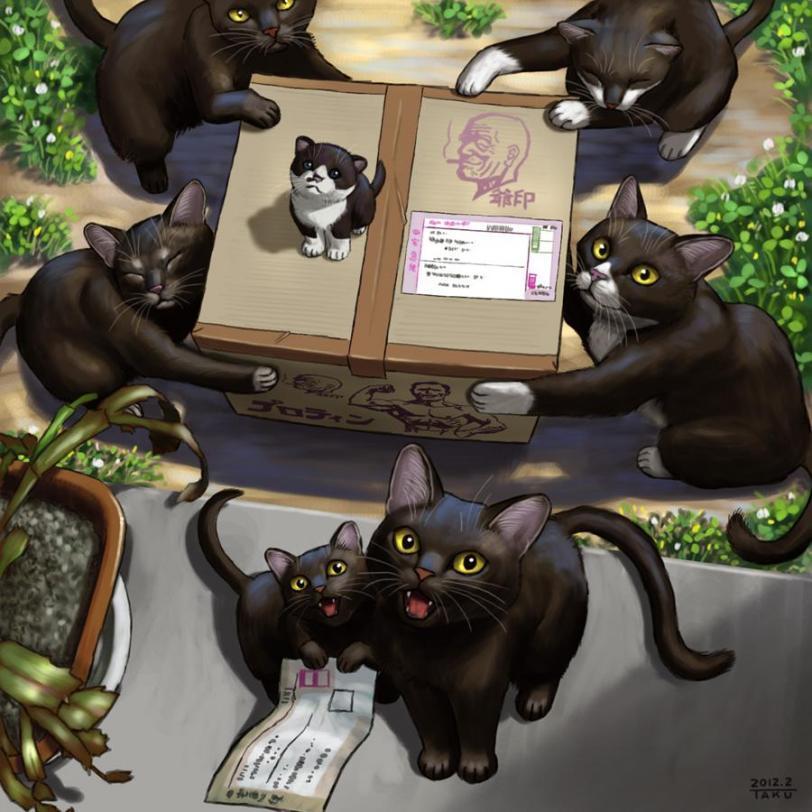Красивые картинки Арт Живность Котэ Аниме котодоставка