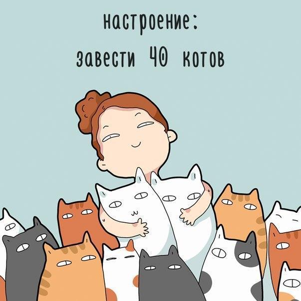 Красивые картинки Арт Котэ Милота Правда жизни настроение