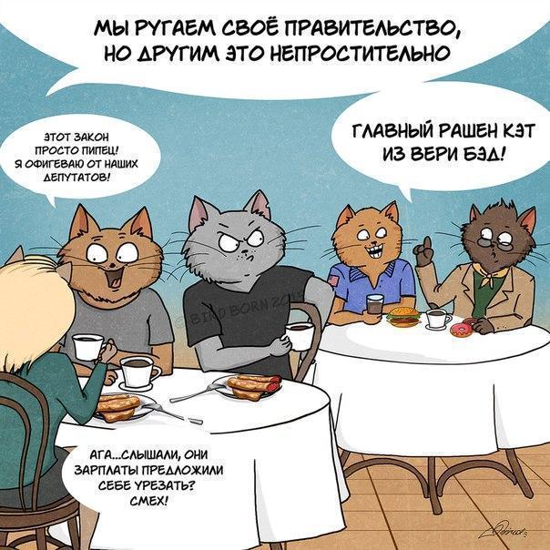 Красивые картинки Комиксы Арт Котэ кот Bird Born