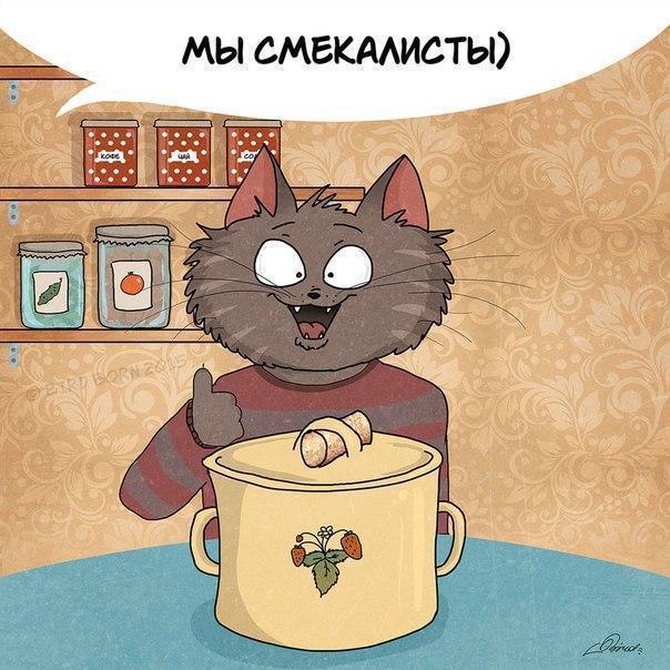 Красивые картинки Арт коты кот Комикс Bird Born
