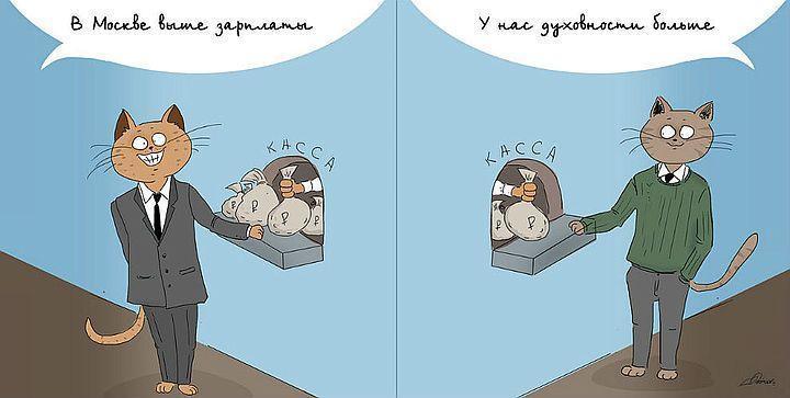 кот Комикс Bird Born Москва-Питер