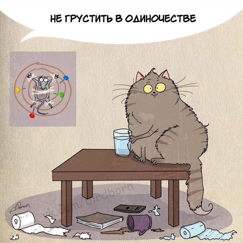 коты кот Милота Комикс Bird Born