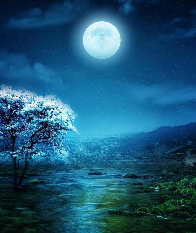 Красивые картинки Арт Природа ночь луна