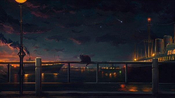 Котэ кот Пейзаж ночь Порт