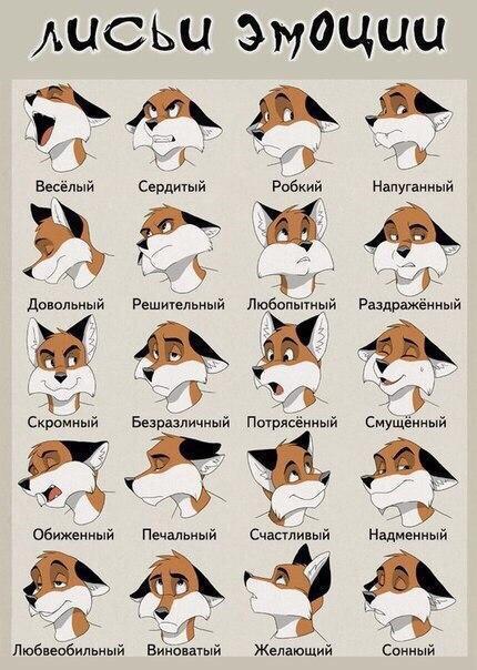Красивые картинки Арт Лиса