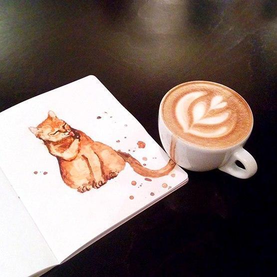 Фото кофейные коты Красивые картинки рисунок кофе