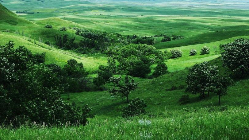 Фото Природа Красивые картинки кликабельно