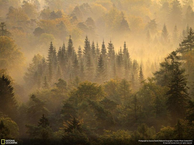 Фото Красивые картинки Природа кликабельно National Geographic