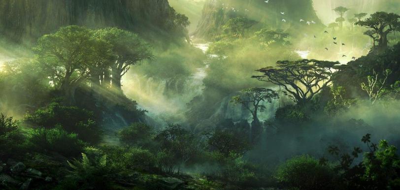 Арт Красивые картинки Природа кликабельно джунгли песочница